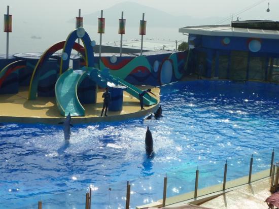 ocean-park hyderabad