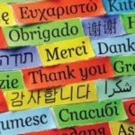 Best German Language Courses in Delhi: Choose wisely